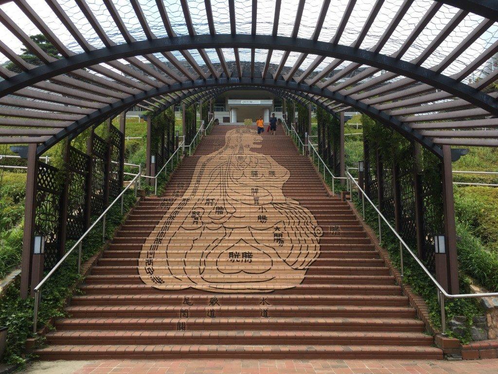 ▲階段が、漢方医学のイラストですね。