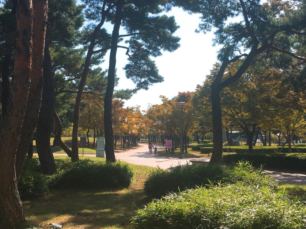 ▲apec公園